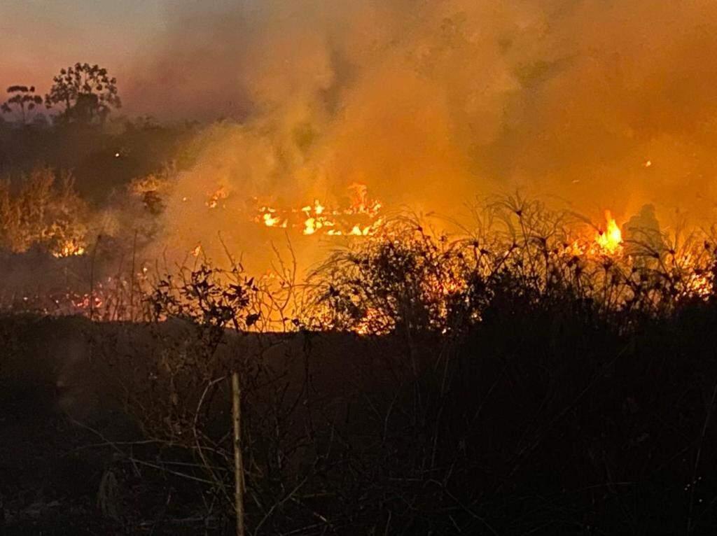 Incêndio na região do Pantanal no começo do mês (Foto: Divulgação   CBMMS)
