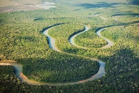 Pantanal de MS vira destaque de peça publicitária no Japão