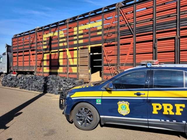 Motorista que saiu de MS com caminhão lotado de maconha é preso no PR