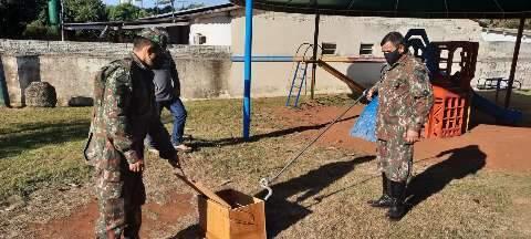 Filhote de jiboia é capturado em pátio de escola particular