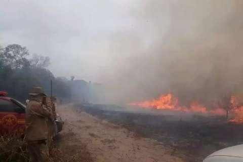 Frio dá falsa sensação de controle e situação é de alerta no Pantanal
