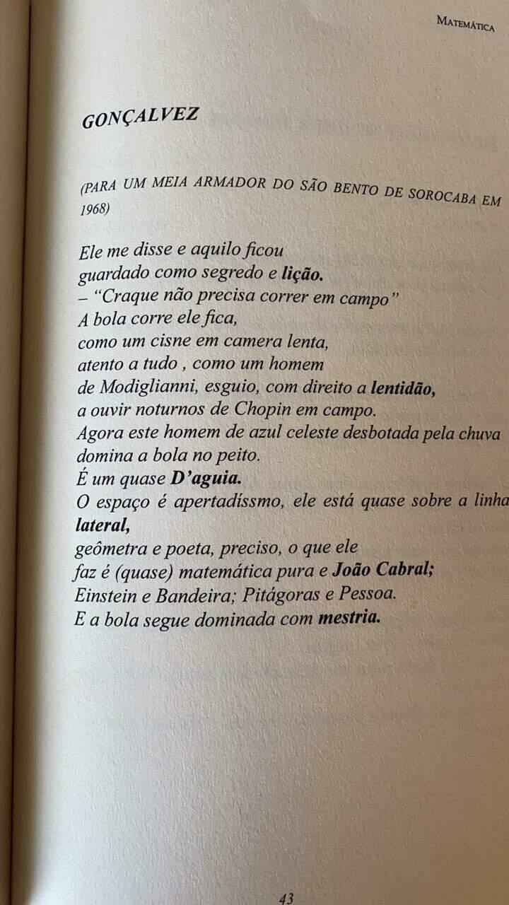 Poema escrito por Airton Bovo em homenagem à Gonçalves. (Foto: Arquivo Pessoal)
