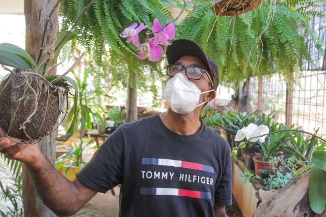 Jardineiro cria hotel para plantas e lucra com hospedagem de até R$ 15