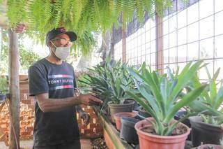 Hospedagem das plantas a partir de R$6,00. (Foto: Marcos Maluf)