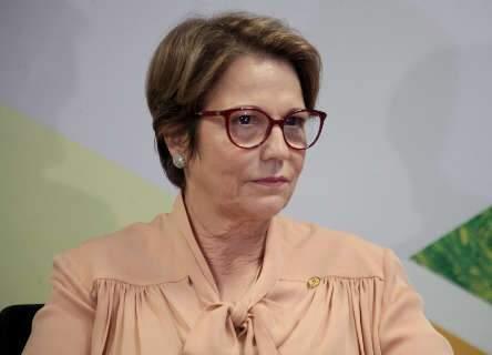 Tereza Cristina é eleita presidente da Junta Interamericana de Agricultura
