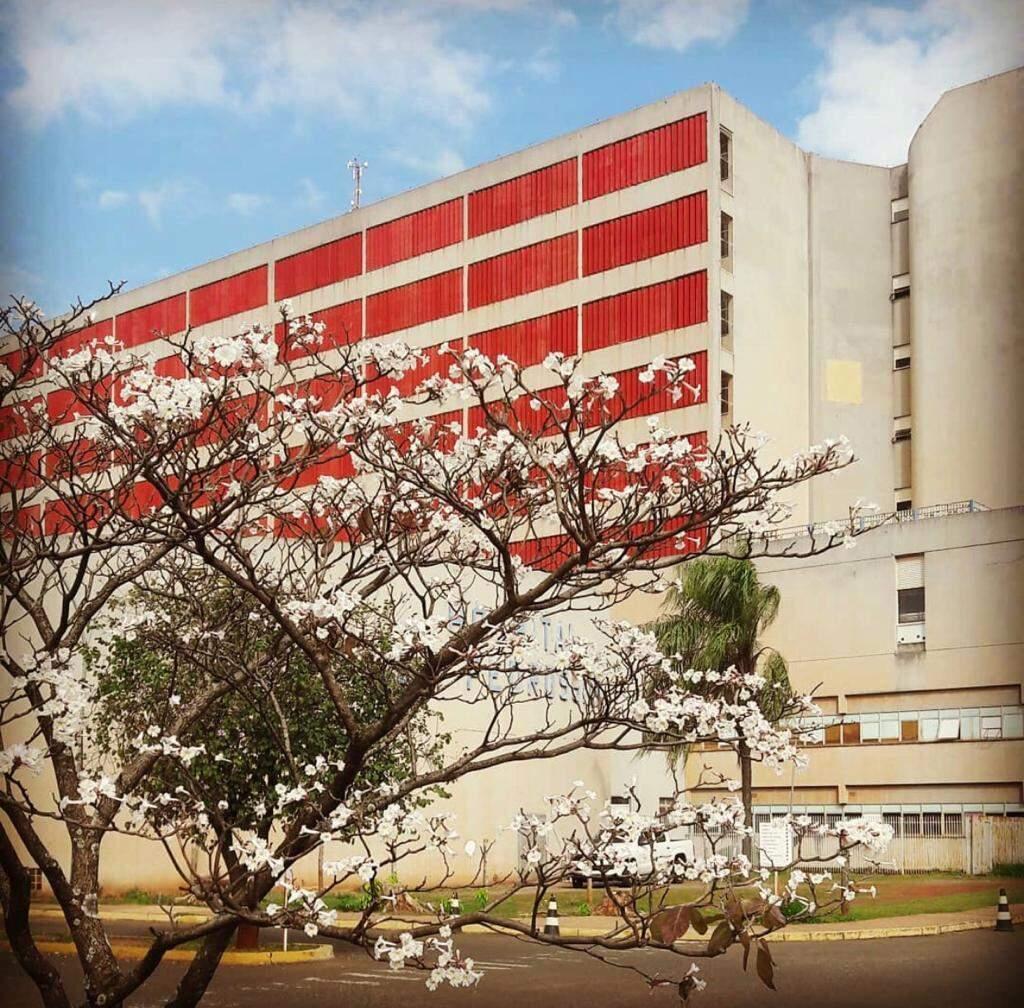 Menina de seis anos veio transferida para o Hospital Regional com suspeita de meningite. (Foto: Divulgação)