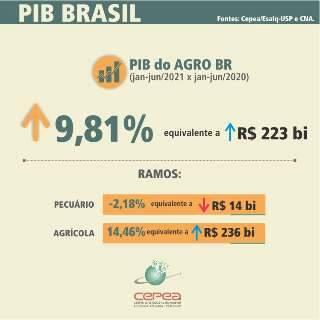 Avanço do PIB do agro no 1º semestre é de quase 10%