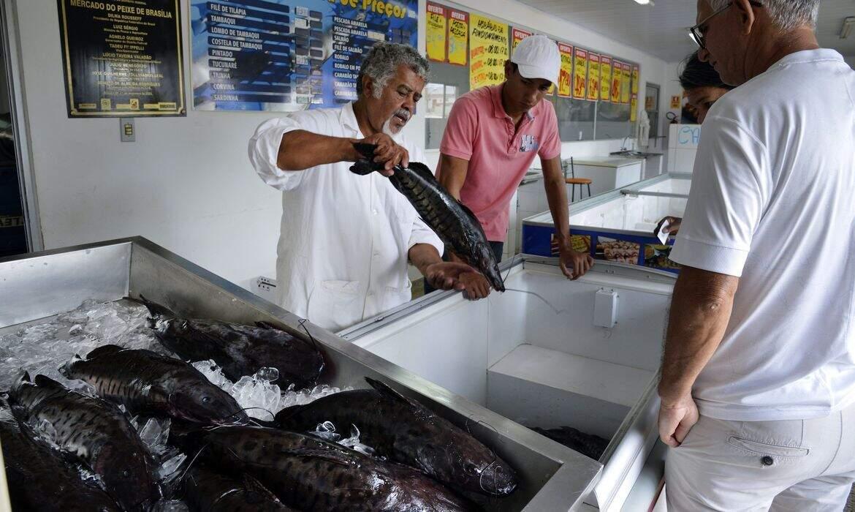 """""""Peixes, mariscos e crustáceos devem conter o selo dos órgãos de inspeção oficiais"""", alerta o ministério. Imagem: José Cruz/Agência Brasil"""