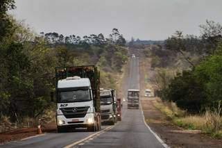 Rota da celulose, rodovia tem tráfego cada vez mais pesado. (Foto: Marcos Maluf)