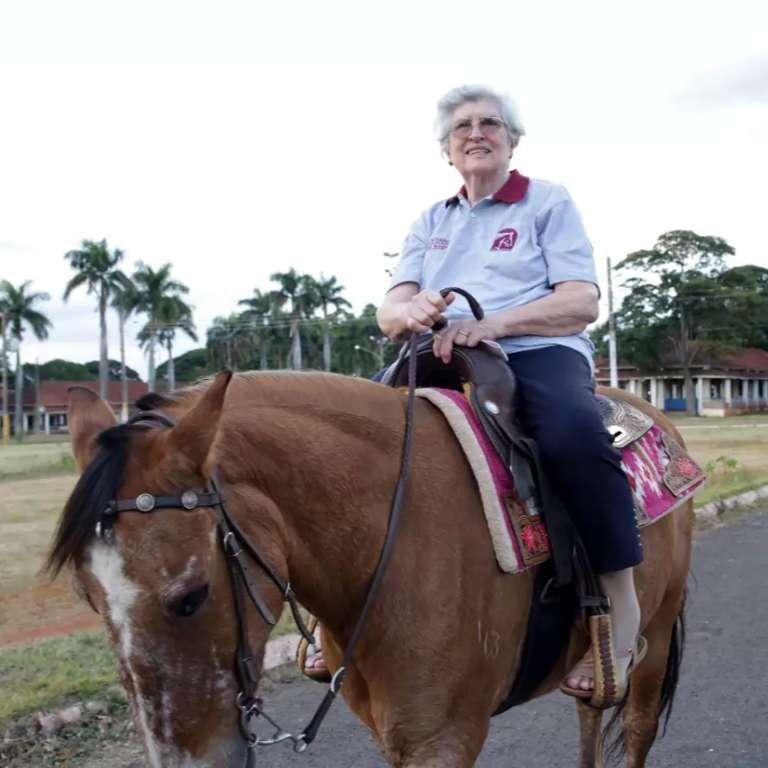 """Cavalos viram """"terapeutas"""" para quem busca desestressar no dia a dia"""