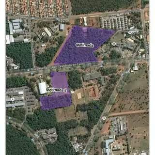 Imagem de parte da área que queimou no Parque dos Poderes. Bombeiros estimam 5 hectares.