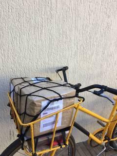 Autônoma realiza coleta e entrega de itens com a bike em qualquer região da cidade (Foto: Arquivo pessoal)