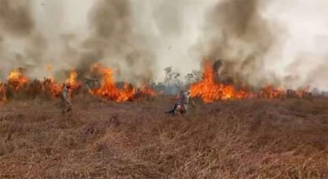 Líder em queimadas, Corumbá tem média de 34 focos por dia em setembro