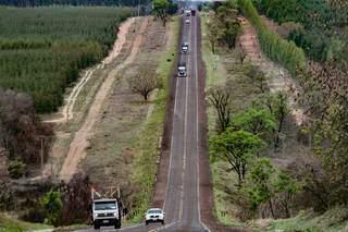 BR-262 é caminho para escoamento do eucalipto, que alimenta fábricas de celulose. (Foto: Marcos Maluf)
