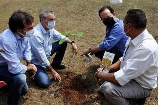 Presidente da Assembleia durante plantio no Dia da Árvore de 2020. (Foto: Luciana Nassar/Arquivo/Alems)