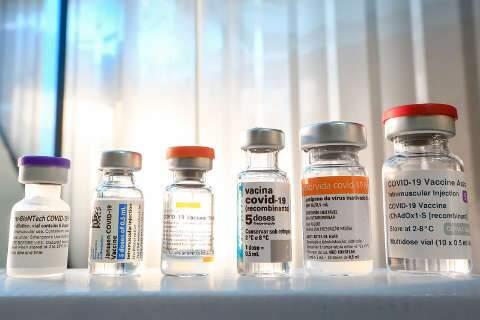 Lote com todos os imunizantes irá para 2ª dose e indígenas; veja divisão