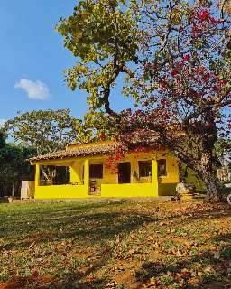 Casa cheia de amarelo vira diversão compartilhada em meio à natureza