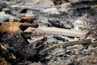 Cachorro carbonizado na área usada como lixão pelos moradores. (Foto: Henrique Kawaminami)
