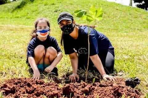 Plantio de 200 mudas será realizado no Parque das Nações Indígenas neste sábado