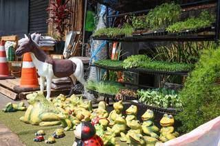 Os sapinhos para jardim, segundo o proprietário, fazem sucesso. (Foto: Henrique Kawaminami)