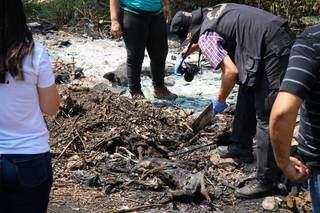 Equipes da perícia no local em que os animais foram queimados. (Foto: Henrique Kawaminami)