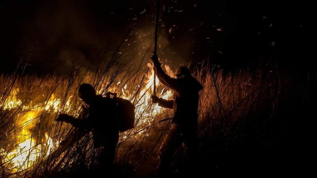 Fogo destruiu 778 mil hectares de área pantaneira em 2021