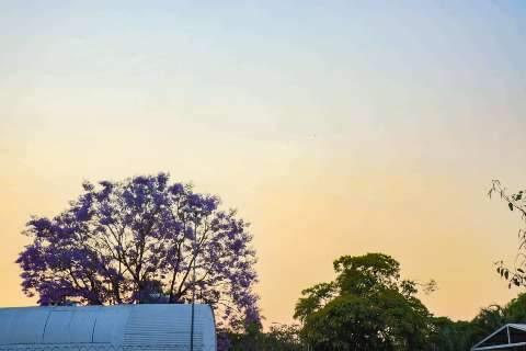 MS tem 6 cidades entre mais quentes do País e previsão é de mais calor