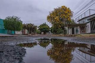 No ano passado, primavera começou em 22 de setembro, e com chuva. (Foto: Arquivo)