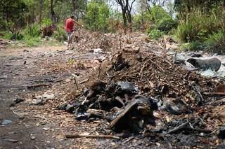 Em meio ao terreno sujo, a fogueira com animais mortos chamou atenção dos moradores. (Foto: Henrique Kawaminami)