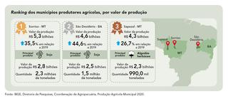Entre as culturas agrícolas que mais contribuíram para o recorde da safra 2020 está a soja
