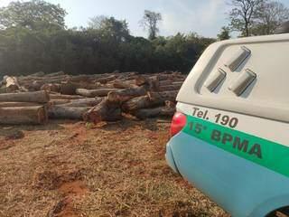 Local onde as madeira eram armazenadas (Foto: Divulgação/PMA)