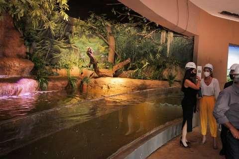 Aquário do Pantanal vai custar R$ 230 milhões e fica pronto em fevereiro