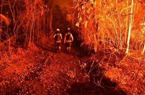 Em disputa com fazendeiros, incêndios florestais crescem em terra indígena de MS