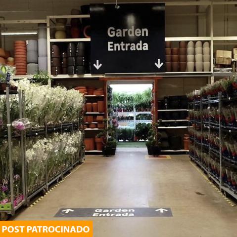 Leroy Merlin deixa seu jardim muito mais bonito com orquídea por apenas R$ 28,90