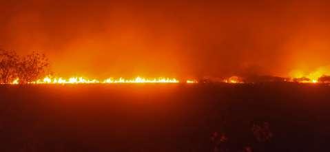 Fumaça reduz visibilidade e impede combate ao fogo com aeronaves no Pantanal
