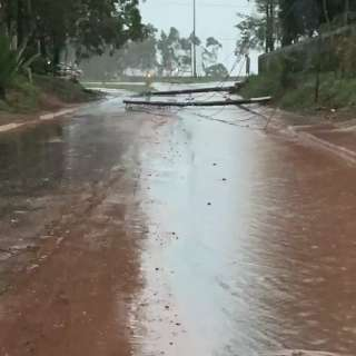 Ponta Porã registra vários estragos e chuva de até 110 mm nesta quinta