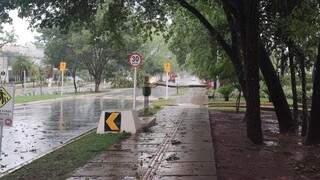 Árvore caída na Rua Desembargador Leão Neto do Carmo, no Parque dos Poderes. (Foto: Jhefferson Gamarra)