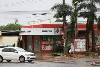 Pet shop teve prejuízo de R$ 3 mil com estragos da chuva. (Foto: Henrique Kawaminami)