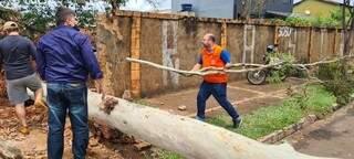 Equipe da Defesa Civil fazendo trabalhos para remover a árvore da pista da Mascarenhas de Moraes. (Foto: Mariely Barros)