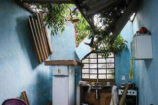 Casa no Bairro São Conrado foi atingida por árvore. (Foto: Henrique Kawaminami)