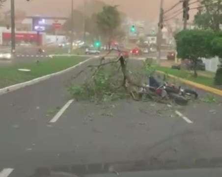 Motociclista é atingido por árvore durante ventania na Av. Mato Grosso