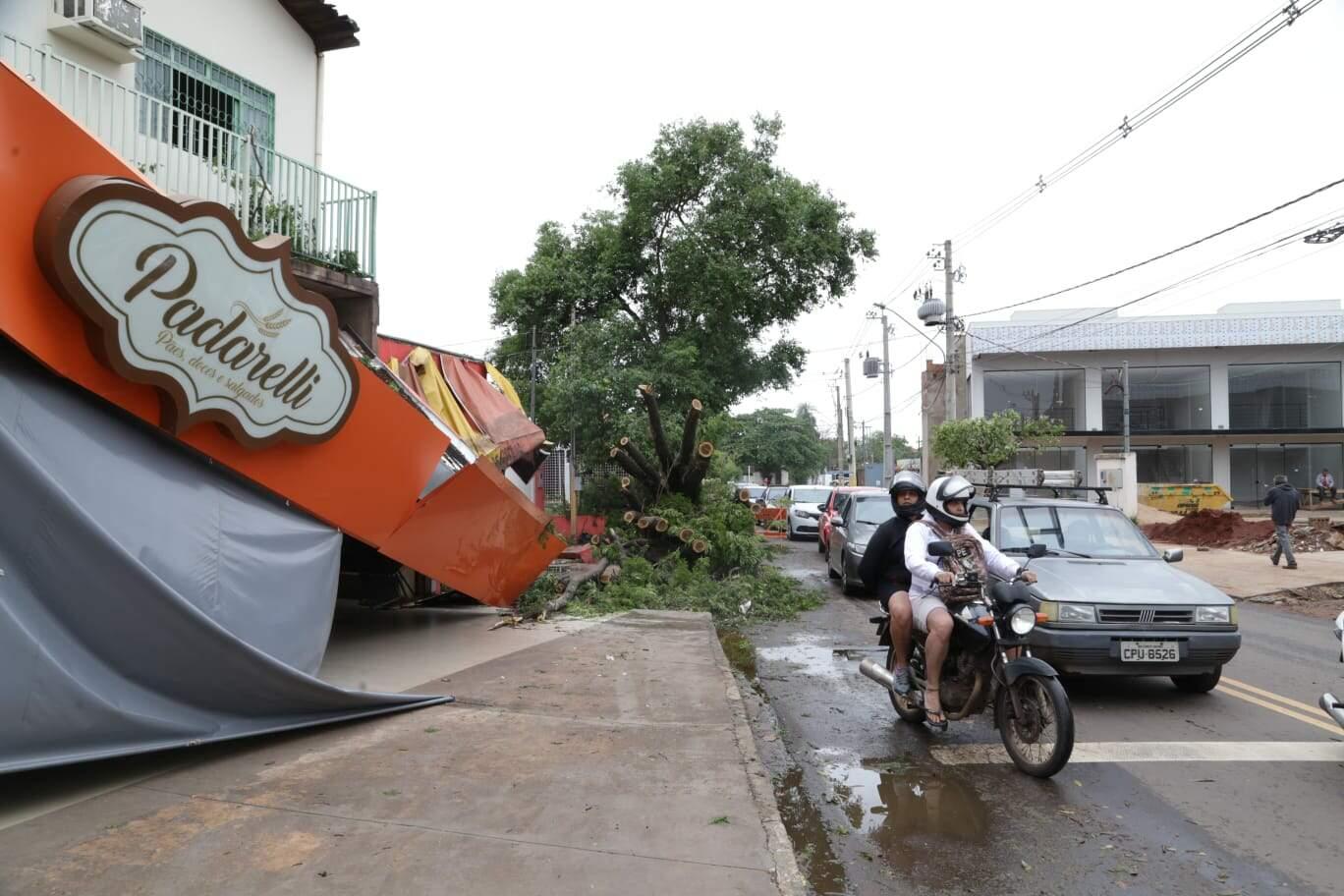 """Em padaria destruída por árvore, dona contabiliza prejuízo: """"mas não fecharemos"""""""