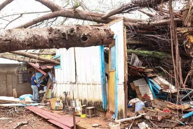 Há 2 dias dormindo em cadeira, morador espera corte de árvore que destruiu casa
