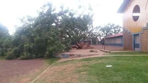 Estragos de tempestade suspendem aulas na Capital
