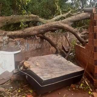 Mangueira invade casa e destrói quarto, banheiro e cozinha na Vila Carlota
