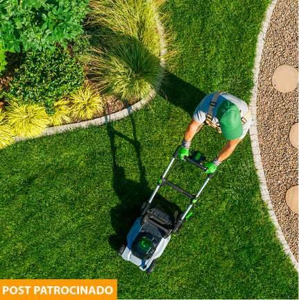 Conheça o aparador de grama ideal para o jardim: a bateria, gasolina ou elétrico