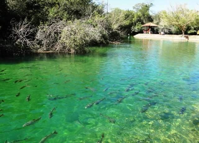 Proposta de captação das águas dos rios de Bonito é rejeitada por vereadores
