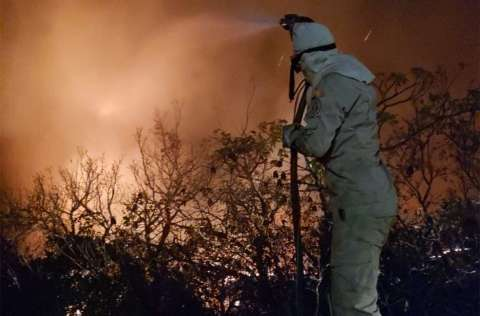 Com 1,8 mil focos este mês, Pantanal recebe R$ 6,7 milhões para combate ao fogo