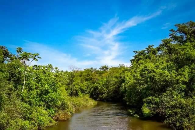 MS terá quatro hidrelétricas ao longo do Rio Pardo até 2023